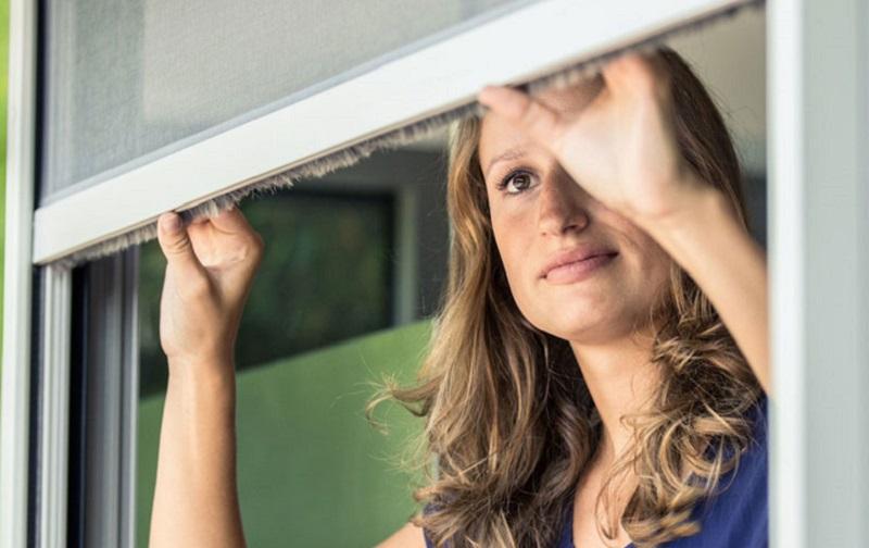 Protégez votre maison des insectes avec une moustiquaire
