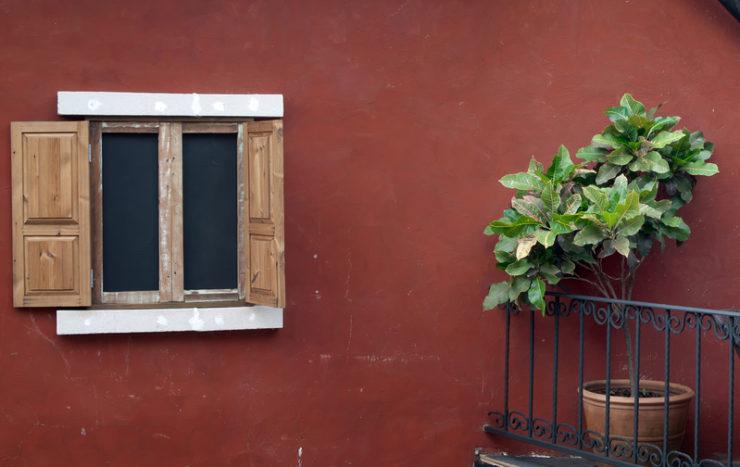 Dans quels cas choisir des fenêtres en bois ?